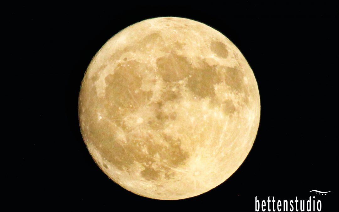 Beeinflusst der Mondzyklus unseren Schlaf?